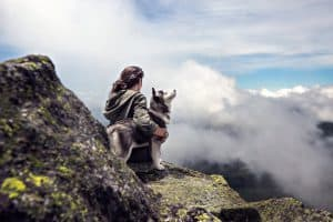 What to consider when taking your dog along for hiking