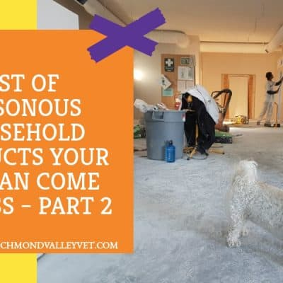 List of poisonous household products for your pet – Part 2