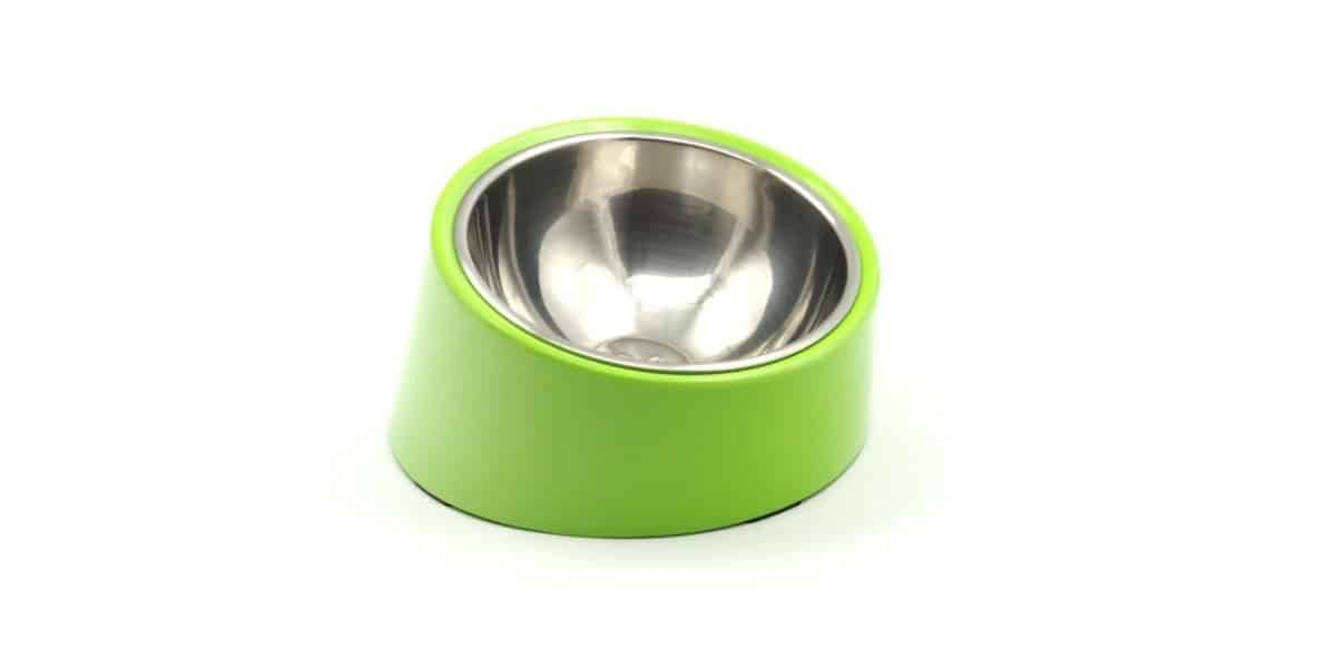 Top 4 bowls for brachycephalic dogs - Richmond Valley