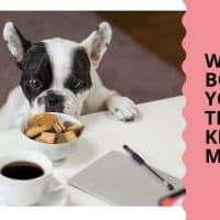 WATER BOWL FOR YOUR DOG THINGS TO KEEP IN MIND